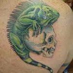 фото тату игуана от 26.06.2018 №129 - tattoo of iguana - tatufoto.com