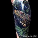 фото тату игуана от 26.06.2018 №132 - tattoo of iguana - tatufoto.com