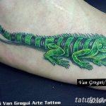 фото тату игуана от 26.06.2018 №134 - tattoo of iguana - tatufoto.com