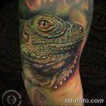 фото тату игуана от 26.06.2018 №145 - tattoo of iguana - tatufoto.com