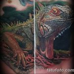 фото тату игуана от 26.06.2018 №148 - tattoo of iguana - tatufoto.com