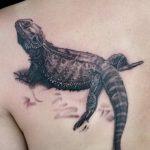 фото тату игуана от 26.06.2018 №150 - tattoo of iguana - tatufoto.com