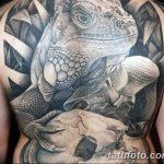 фото тату игуана от 26.06.2018 №153 - tattoo of iguana - tatufoto.com