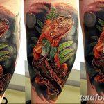 фото тату игуана от 26.06.2018 №157 - tattoo of iguana - tatufoto.com