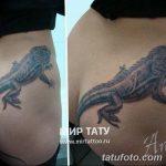 фото тату игуана от 26.06.2018 №158 - tattoo of iguana - tatufoto.com