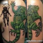 фото тату игуана от 26.06.2018 №166 - tattoo of iguana - tatufoto.com