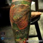 фото тату игуана от 26.06.2018 №167 - tattoo of iguana - tatufoto.com