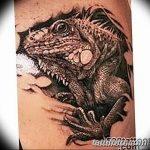 фото тату игуана от 26.06.2018 №171 - tattoo of iguana - tatufoto.com