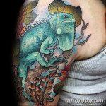 фото тату игуана от 26.06.2018 №172 - tattoo of iguana - tatufoto.com