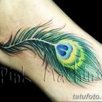 фото тату перо павлина от 26.06.2018 №014 - tattoo peacock feather - tatufoto.com