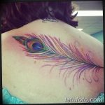 фото тату перо павлина от 26.06.2018 №072 - tattoo peacock feather - tatufoto.com