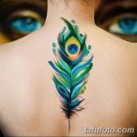 фото тату перо павлина от 26.06.2018 №085 - tattoo peacock feather - tatufoto.com