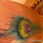 фото тату перо павлина от 26.06.2018 №098 - tattoo peacock feather - tatufoto.com
