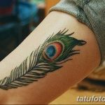фото тату перо павлина от 26.06.2018 №124 - tattoo peacock feather - tatufoto.com