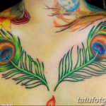 фото тату перо павлина от 26.06.2018 №134 - tattoo peacock feather - tatufoto.com