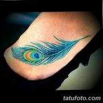 фото тату перо павлина от 26.06.2018 №145 - tattoo peacock feather - tatufoto.com