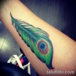 фото тату перо павлина от 26.06.2018 №174 - tattoo peacock feather - tatufoto.com