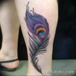 фото тату перо павлина от 26.06.2018 №193 - tattoo peacock feather - tatufoto.com