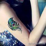 фото тату перо павлина от 26.06.2018 №207 - tattoo peacock feather - tatufoto.com