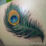 фото тату перо павлина от 26.06.2018 №223 - tattoo peacock feather - tatufoto.com