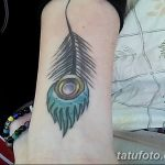 фото тату перо павлина от 26.06.2018 №286 - tattoo peacock feather - tatufoto.com