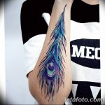 фото тату перо павлина от 26.06.2018 №321 - tattoo peacock feather - tatufoto.com