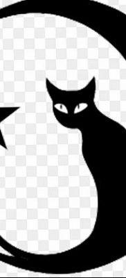фото тату полумесяц со звездой от 26.06.2018 №083 – tattoo crescent with a – tatufoto.com