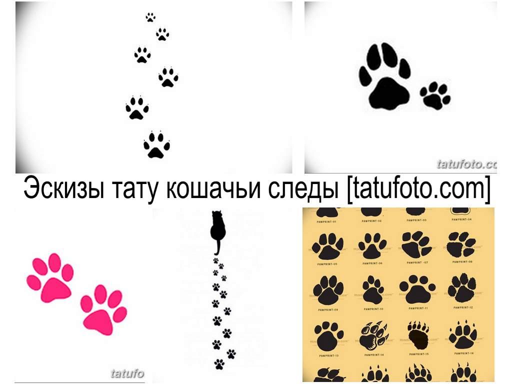 Эскизы тату кошачьи лапки - коллекция рисунков для татуировки