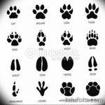 Эскизы тату кошачьи следы от 31.07.2018 №002 - Sketches tattoo cat tracks - tatufoto.com