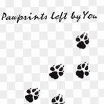 Эскизы тату кошачьи следы от 31.07.2018 №004 - Sketches tattoo cat tracks - tatufoto.com