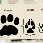 Эскизы тату кошачьи следы от 31.07.2018 №006 - Sketches tattoo cat tracks - tatufoto.com