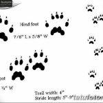 Эскизы тату кошачьи следы от 31.07.2018 №012 - Sketches tattoo cat tracks - tatufoto.com