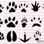 Эскизы тату кошачьи следы от 31.07.2018 №013 - Sketches tattoo cat tracks - tatufoto.com