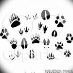 Эскизы тату кошачьи следы от 31.07.2018 №019 - Sketches tattoo cat tracks - tatufoto.com