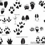 Эскизы тату кошачьи следы от 31.07.2018 №034 - Sketches tattoo cat tracks - tatufoto.com