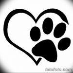 Эскизы тату кошачьи следы от 31.07.2018 №049 - Sketches tattoo cat tracks - tatufoto.com