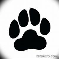 Эскизы тату «кошачьи лапки»