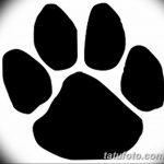 Эскизы тату кошачьи следы от 31.07.2018 №084 - Sketches tattoo cat tracks - tatufoto.com