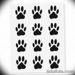 Эскизы тату кошачьи следы от 31.07.2018 №086 - Sketches tattoo cat tracks - tatufoto.com