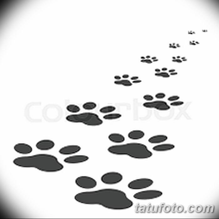 Эскизы тату кошачьи следы от 31.07.2018 №090 - Sketches tattoo cat tracks - tatufoto.com