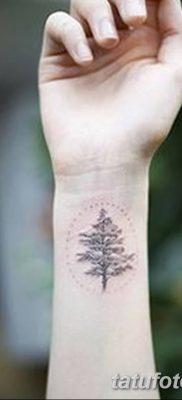 фото тату сосна от 31.07.2018 №005 – tattoo pine – tatufoto.com