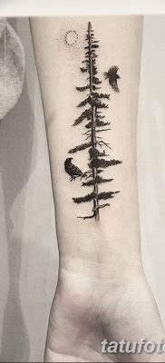 фото тату сосна от 31.07.2018 №007 – tattoo pine – tatufoto.com