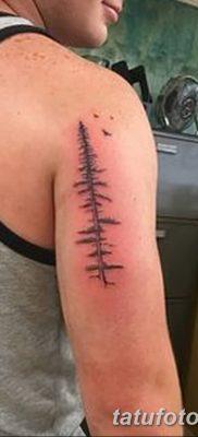 фото тату сосна от 31.07.2018 №014 – tattoo pine – tatufoto.com