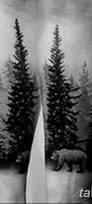 фото тату сосна от 31.07.2018 №018 – tattoo pine – tatufoto.com