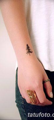 фото тату сосна от 31.07.2018 №084 – tattoo pine – tatufoto.com