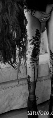 фото тату сосна от 31.07.2018 №091 – tattoo pine – tatufoto.com