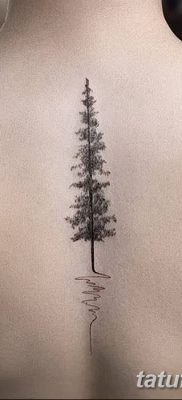 фото тату сосна от 31.07.2018 №092 – tattoo pine – tatufoto.com