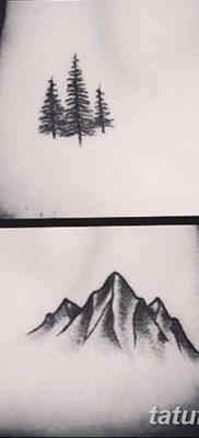 фото тату сосна от 31.07.2018 №097 – tattoo pine – tatufoto.com