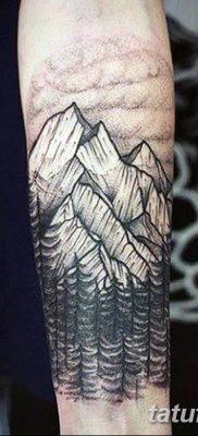 фото тату сосна от 31.07.2018 №098 – tattoo pine – tatufoto.com