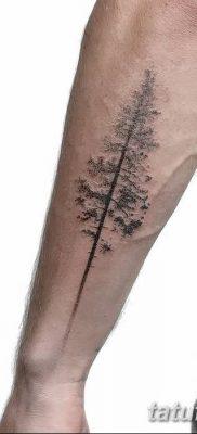 фото тату сосна от 31.07.2018 №103 – tattoo pine – tatufoto.com